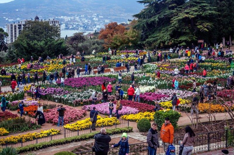 Никитский ботанический сад1.jpg