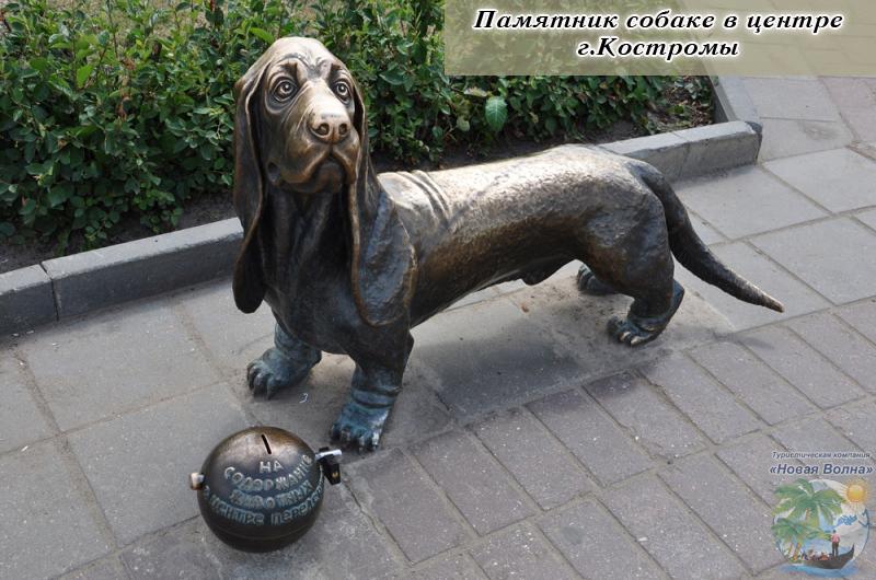 Собака-памятник.jpg
