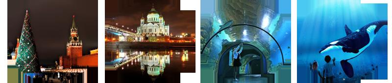 2017 Москва.png
